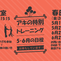 aki-special201705-min
