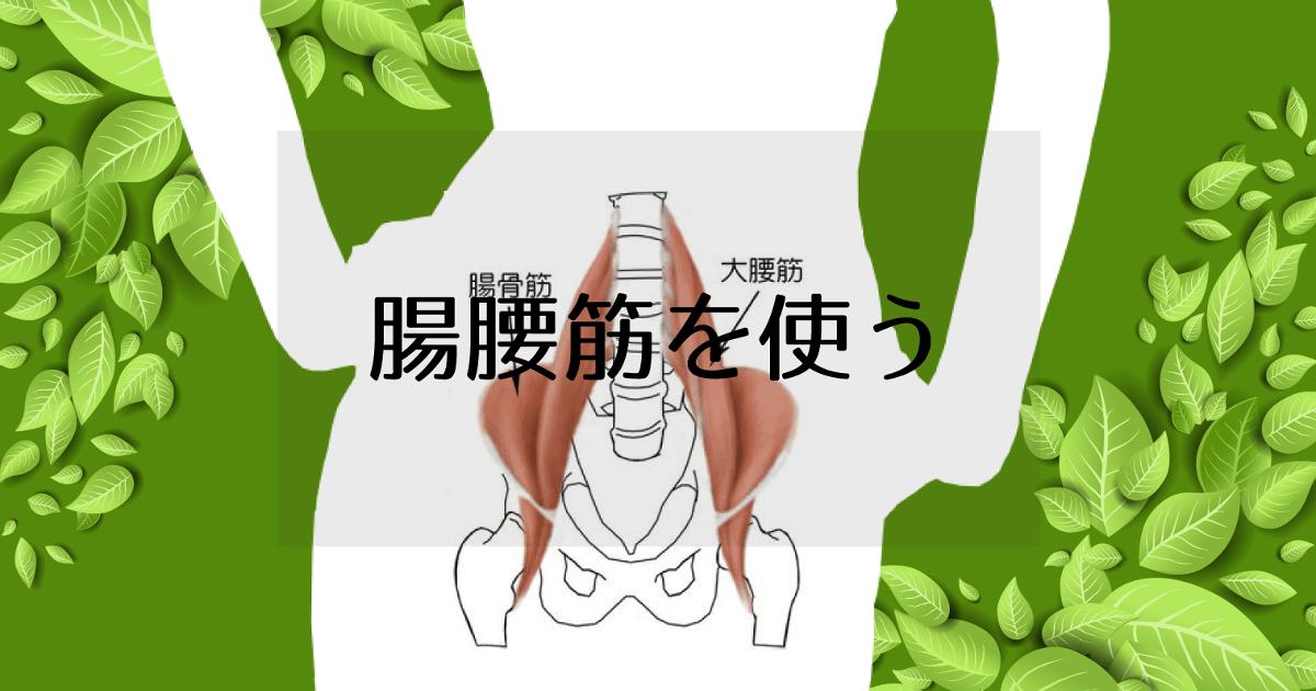 iliopsoas-muscle