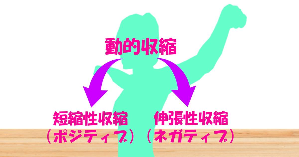 サークル|社交ダンス|三郷市総合体育館|アーム|動き