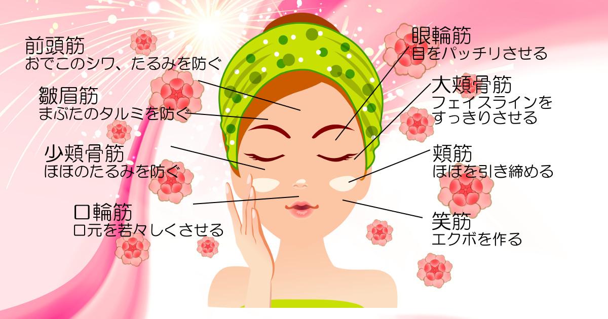 社交ダンス|美容|表情筋|トレーニング|顔トレ|たるみ|顔
