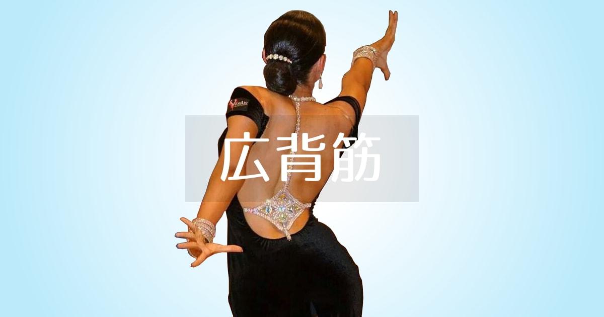 社交ダンス|広背筋|収縮