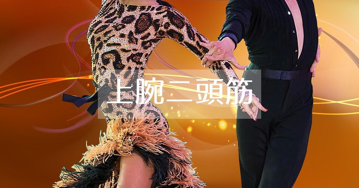 上腕二頭筋|社交ダンス|肘|曲げる
