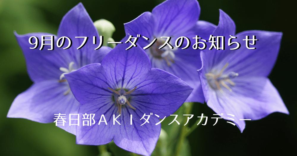 社交ダンス|フリーダンス|吉川市|埼玉県