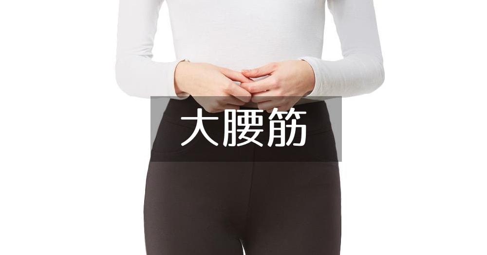 大腰筋|収縮|骨盤前傾|社交ダンス