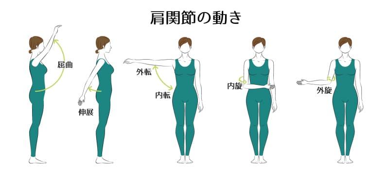 肩関節の動き