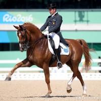 馬場馬術|オリンピック|東京2020